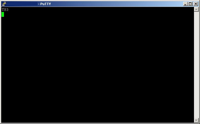 Teamspeak 3 Serverquery Login mit Putty - Connected